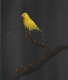 Melting Canary   Djordje Ozbolt    2010