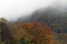"""They don't call them the """"Smoky"""" Mountains for nothing!"""