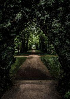 A Secret Garden, Antrim Castle Gardens, Northern Ireland  by Jason McCabe on…