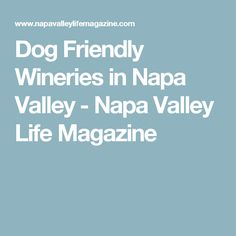 Dog Friendly Wineries in Napa Valley - Napa Valley Life Magazine