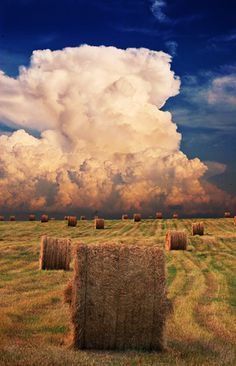 Rolled hay bales against a background of clouds <> (farm life, harvest, weather) Pretty Pictures, Cool Photos, Beautiful World, Beautiful Places, Beautiful Sky, Beautiful Flowers, All Nature, Science Nature, Country Life