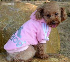 Springer Spaniel Personnalisé Sweat Capuche Chien drôle cadeau chien chiot anniversaire Pet Cool