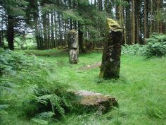 Cnoc Fada Stones, Isle of Mull