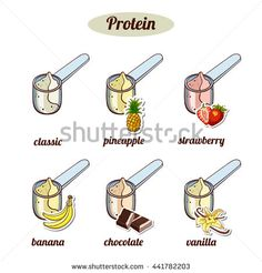 Scoops With Different Protein Powder