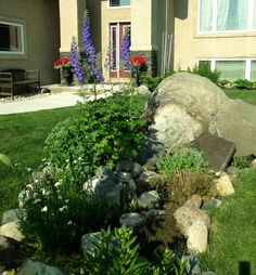 Front rock garden in its second year.