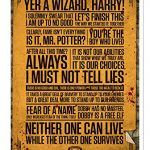Potter Quotes Poster Framed Laminated - Quidditch Corner
