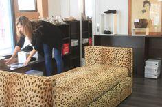"""""""Le canapé n'est pas à vendre"""" :D - Rue de la Salie à Bayonne #bayonne #boutique #collection #mode #bazardefilles #interditauxhommes #déco #leopard #banquette"""