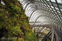 Emanuele Del Bufalo traveler&photographer | - Singapore
