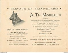 Carte De Visite :  Elevage De Saint (St) Blaise A.Th.Moreau-Eleveur Chiens Berger Allemands Carrières Sous Poissy 78
