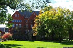 5. Macalester College (more liberal than Smith and Grinell)