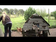 Self Sufficient Eco Farm - Documentary - YouTube
