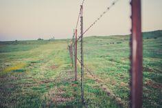 photo Ryan White, Bokeh, Utility Pole, Fence, Explore, Exploring, Boquet
