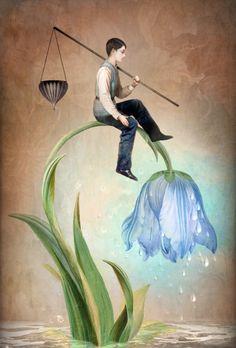 The Gift of Rain by Christian Schloe