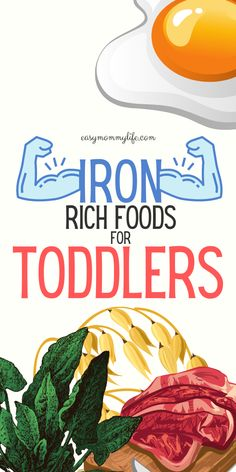 Here is a list of iron rich foods for kids and toddlers. Includes iron rich food recipes, charts and meal ideas. Special focus on iron rich food for picky eaters and anemia.  #ironrichfood #ironrichfoodforkids #pickyeater #toddlermeals #toddler #healthytoddlermeals Toddler Nutrition, Healthy Toddler Meals, Easy Meals For Kids, Toddler Snacks, Kids Meals, Food For Anemia, Toddler Vegetables, Toddler Muffins, Baby Puree