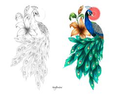 drawing of peacock tattoo designs - Yahoo Search Results Peacock Drawing, Peacock Tattoo, Peacock Painting, Peacock Art, Bff Drawings, Pencil Art Drawings, Tattoo Drawings, Daddy Tattoos, Girl Back Tattoos