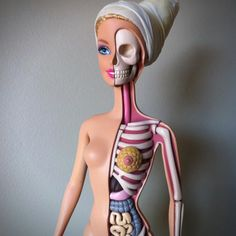 Barbie Anatomy Model by Jason Freeny