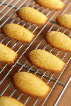 Madeleines, High Altitude Recipe ( I used to live in the mountains nad remember the difficulties of baking at high altitudes. This is for all you mountain dwellers!)