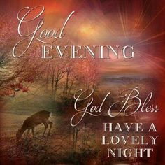 10 Relaxing And Peaceful Good Night Quotes Good Night Blessings, Good Night Wishes, Good Night Sweet Dreams, Good Night Moon, Night Night, Good Night Thoughts, Good Night Love Images, Good Night Image, Good Night Family