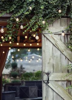 Festival Lights from Terrain. Saved to Outdoor Living. Shop more products from Terrain on Wanelo. Gazebos, Outdoor Lighting, Outdoor Decor, Lighting Ideas, Outdoor Ideas, Backyard Lighting, Wedding Lighting, Festival Lights, Globe Lights