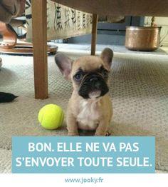 www.jooky.fr