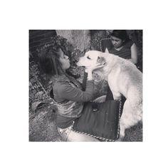 #dog #dog #puppy #pup #TagsForLikes.com #cute #eyes #instagood #dogs_of_instagram #pet #pets #animal #animals #petstagram #petsagram #dogsitting #photooftheday #dogsofinstagram #ilovemydog #instagramdogs #nature #dogstagram #dogoftheday #lovedogs #lovepuppies #hound #adorable #doglover #instapuppy #instadog by mariateresacoronado