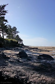 Yachats, OR - one of my top two Oregon beach towns... love.