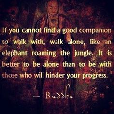 Wise wirds of Budha Motivacional Quotes, Great Quotes, Quotes To Live By, Inspirational Quotes, Path Quotes, Profound Quotes, Yoga Quotes, Change Quotes, The Words