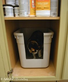 Home made litter box for inside cabinet with door.