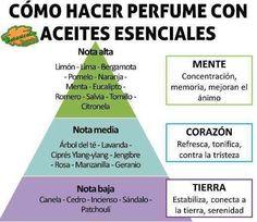 como hacer perfume con aceites esenciales segun concepto de aromaterapia y normas