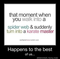 Happens to the best of us:  That moment when you walk into a spiderweb and suddenly turn into a karate master.