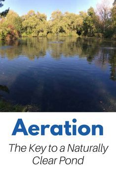 Large Pond Aeration - The key to a Natural, Clear, Healthy Pond Natural Swimming Ponds, Natural Pond, Backyard Water Feature, Ponds Backyard, Outdoor Ponds, Koi Pond Design, Garden Design, Pond Aerator, Farm Pond