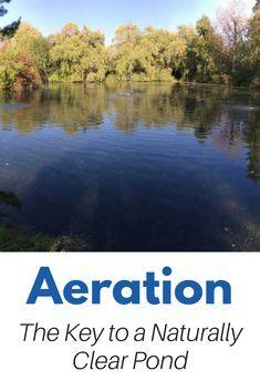Large Pond Aeration - The key to a Natural, Clear, Healthy Pond Natural Swimming Ponds, Natural Pond, Backyard Water Feature, Ponds Backyard, Koi Pond Design, Garden Design, Pond Aerator, Farm Pond, Garden Pond
