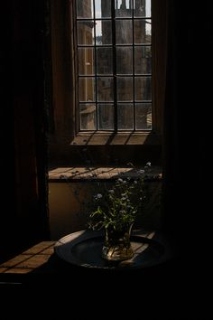 "Forget-me-nots at Haddon Hall. The house and grounds have played host to no less than three versions of ""Jane Eyre""."