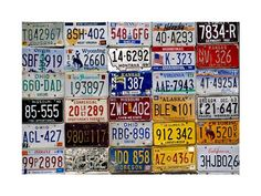 We have license plates from where we've traveled.  Would love to put all of them up on a wall in the house.