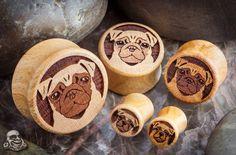 Apricot wood pug plugs