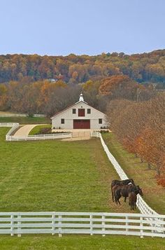 Sagamore Farm Barn...Glyndon,MD I have visited this farm several times. It is steeped in history. G.S.
