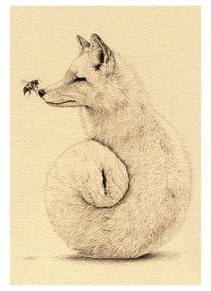 pencil drawings | Tumblr