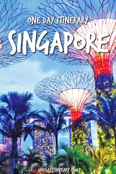 Singapore One Day Itinerary - Top things to do in Singapore