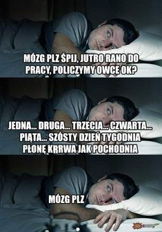 Dankest Memes, Jokes, Polish Memes, Funny Mems, Everything And Nothing, Wtf Funny, Good People, Funny Images, True Stories