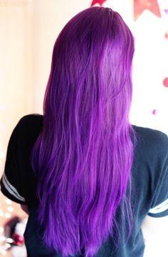 Arctic Fox Purple Rain and Violet Dream