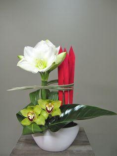 Les Fleurs d'amaryllis et orchidée pour Noël 2512-3 de Fleuriste Abaca sont livrées dans tous les quartiers de Montréal et de Laval . Cadeaux corporatifs .