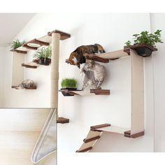 Cool Cat Trees, Diy Cat Tree, Cat Tree Condo, Cat Condo, Cool Cats, Cat Friendly Plants, Cat Tree Plans, Mod Wall, Cat Wall Shelves