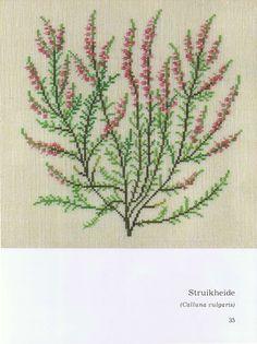 Gallery.ru / Фото #2 - Книга с яблоневой веткой на обложке - Mosca