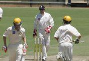 Australia's Summer of Cricket
