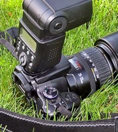 What is ISO: understanding your camera's sensitivity settings (and the best ways to use them)