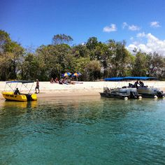 Noosa Spit: This beach is a dedicated off-leash at all times dog beach and is also a popular locals picnic spot and  for river boats to pull in to spend the day.