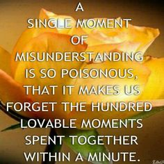 A single moment of misunderstand is so poisonous that it makes us forget the hundred loveable moments spent together within a minute.