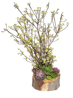 """Brides: Rustic Wedding Centerpiece With Branches. Rustic""""It's going to be large but laid-back, at a cool ranch in the mountains."""" Barb Salzman of Hatch Creative StudioFeatured In: Rustic Wedding Centerpiece With Branches"""