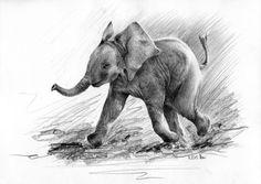 Rysunek ołówkiem małęgo słonika biegnącego z trąbą w górę
