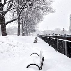"""""""A view of Lincoln park in Portland Maine this morning as another storm passes through"""""""